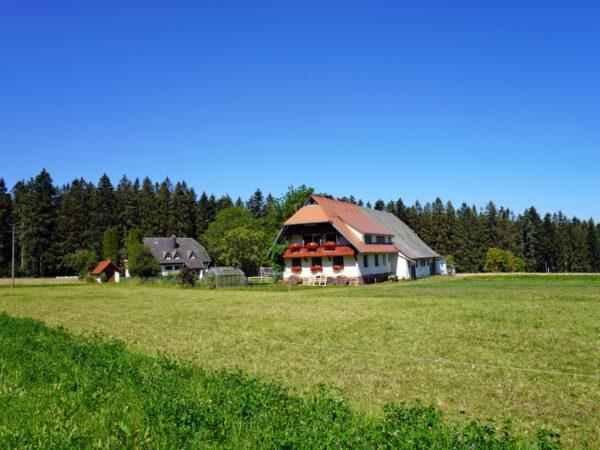 Der Reibehof im Sommer